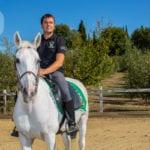Cavalli-giostra-1