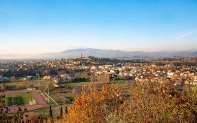 Fondazione Arezzo in tour