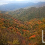 parco foreste casentinesi 005