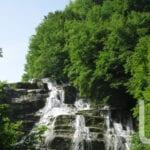 parco foreste casentinesi 007